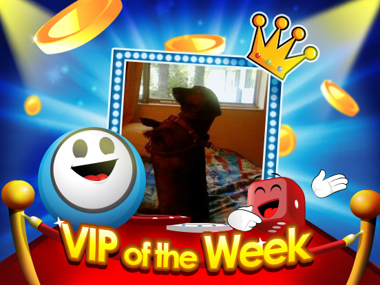 VIP of the Week: Luvdogs