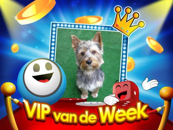 VIP van de Week: ollekebolleke