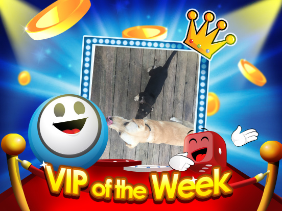 VIP of the Week: SHAYLOO