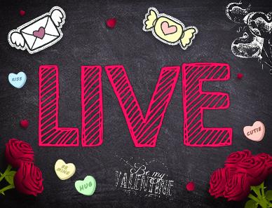 Bekijk ons LIVE!